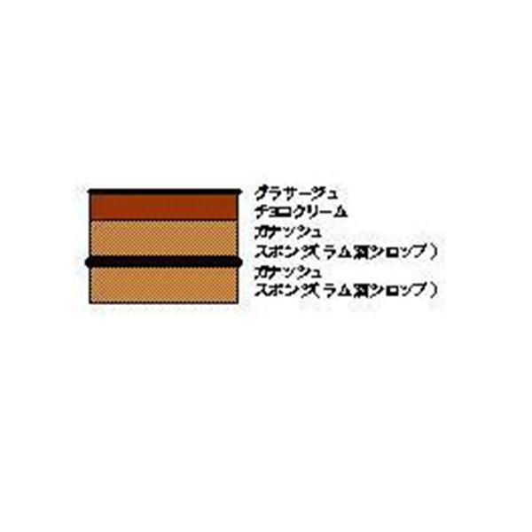 ベルリーベ ベルギー産チョコレート濃厚ショコラ 6個